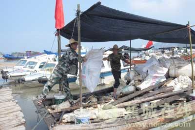 蕉城:清理海漂垃圾 保护海洋环境