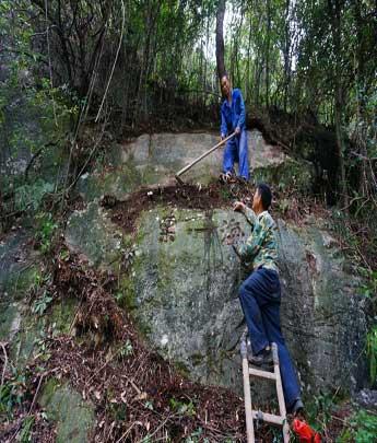 蕉城区白鹤岭古官道再现明万历年代石刻