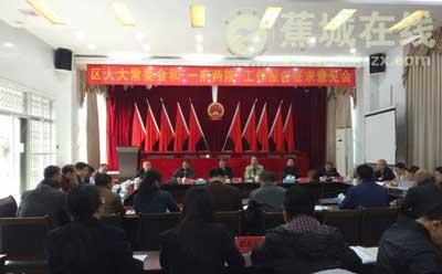"""区人大常委会与""""一府两院""""工作报告征求意见会在飞鸾镇召开"""