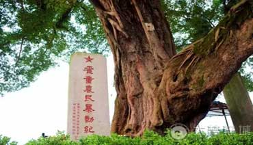 """鬼雄吟——""""霍童惨案""""75周年祭"""