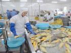 特色产业助力区域经济发展