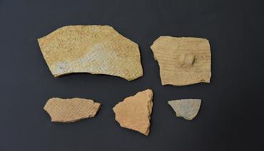 宁德蕉北出土罕见大石锛填补城区古人类遗址空白