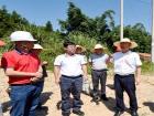 区领导调研G237国道和周边环境整治情况